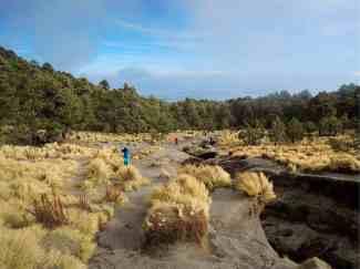 Am Weg zum Malinche